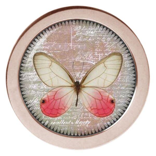 X-Change Butterfly