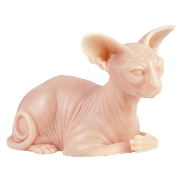 Tattoo Skin Practice Naked Cat