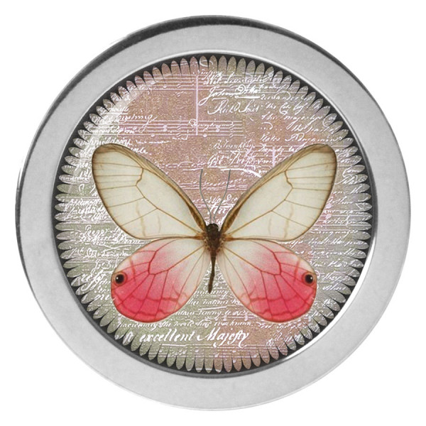 Steel Highline® - X-Change Butterfly Frontlid